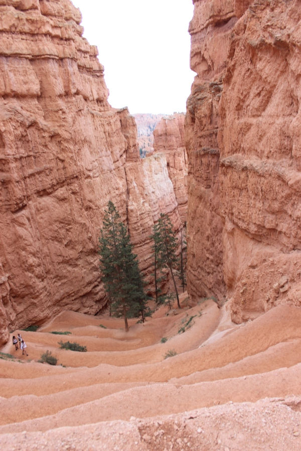Yeah, we climbed this. Look how small the people are who are only halfway up.